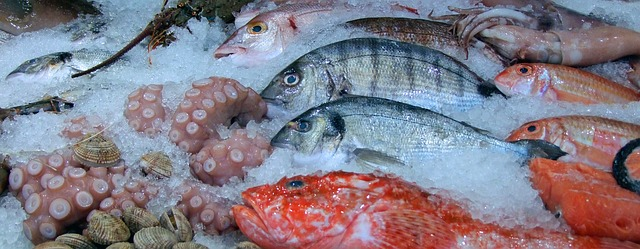 Pravilnik o obavljanju gospodarskog ribolova
